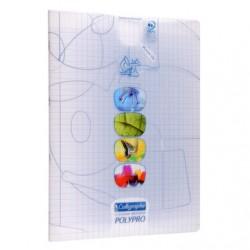 Cahier TP Polypro Calligraphe 96p - 24*32 - Transparent - 90g - Piqué - Grands Carreaux